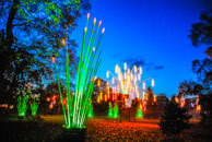 tilt christmas at kew kew garden 2014